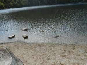 39_lago_lakes